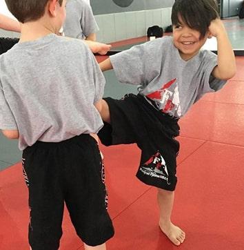 kids mma mixed martial arts elgin il